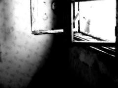through old windows